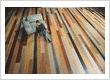 #woodflooring & #laminateflooring Impressive board formats make individual interior design dreams come true | www.haro.co.nz