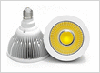 LED PAR38 spot light