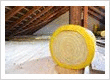 Lady Baltimore Insulation Co. is an old insulation company with new ideas, like that
