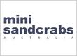 Mini Sandcrabs