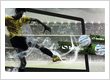 Google Display Network Website Design