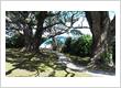 Attractions on the Coromandel - beautiful NZ beaches