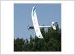 ParkZone Radian RC Sailplane RC Hobbies NZ