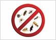 Pest Control Hertford