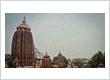 Temple Tours in Odisha