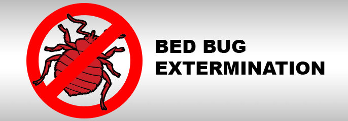 Some Important Do's and Don'ts Of Bed Bug Prevention