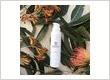 Roccoco Skin Transformation Clinic Skin Detox Moisturiser