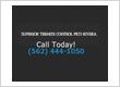 Superior Termite Control Pico Rivera
