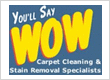 You'll Say Wow Carpet Cleaning
