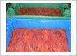 Fresh salmon skeins in season : Small or bulk orders.