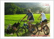 Top Biking Adventures in Vietnam