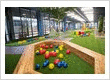 Petit early learning Barton - Incorporating natural elements into the indoor environments to foster a connection to the natural world