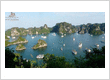 What will you do if your cruise is canceled in Halong Bay!