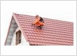 Palmetto Roofing