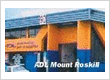 ADL Auto parts (Mt Roskill)