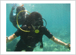 Diving in Nha Trang 4days - price from $384.00