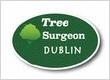 Tree Surgeon Dublin