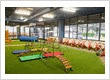 Petit childcare centre Barton - Climate controlled indoor/outdoor play yard