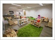 Petit child care near me Barton - Variety of resources catering for children's interests