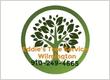 Eddie's Tree Service Wilmington