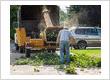 tree removal bloomington mn