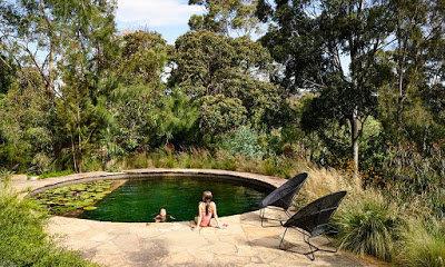Natural pools are making a come back US - ECOlibrium Landscape