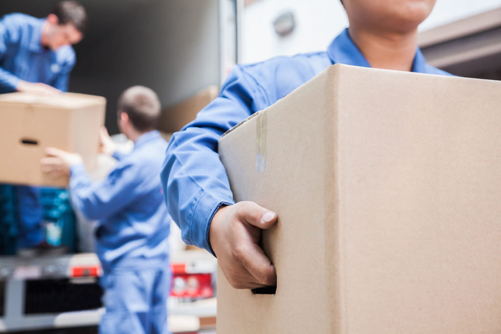Trouble Free Relocation With Professional Movers