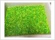Cured Krill - Fluorescent Green