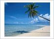 Key West Florida Vacation