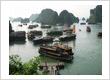 A 'Junk' Trip in Vietnam