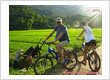 Best Summer Biking Tours in Vietnam 2013