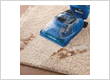 Carpets Cleaning Rowville