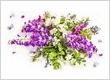 Jennys Florist