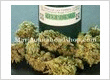 medical marijuana for sale,buy medical marijuana online,  medical marijuana for patient,where to buy medical marijuana online, https://www.mariguanaheadshop.com