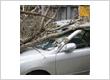 Allstate Insurance - Mohammad Sheikh