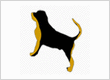 Premium Pet Services Auckland