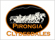 Pirongia Clydesdales