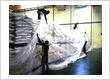 FUMIGASI PRODUK MAKANAN, KUMBANG KAYU & FILE HUB: PT. AVISA MANDIRI 021 – 7976163 / 5465520