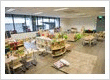 Petit child care centre Barton - Treasure Cove studio