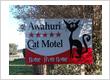 Awahuri Cat Motel