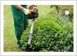 Gardeners Southgate