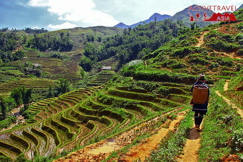 Trekking in Sapa and the Hill Tribes in Northern Vietnam