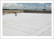 Roof Systems That Pay for Themselves Solutions for flat, low-slope, metal and more!