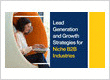 Lead Generation and Growth Strategies for Niche B2B Industries