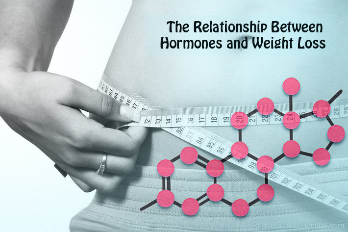 The Relationship Between Hormones And Weight Loss
