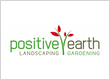 Positive Earth