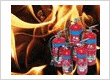 Industrial Fire Extinguisher -Fire Protection Association | Firewatch NZ