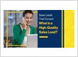 Sales Leads That Convert: What is a High-quality Sales Lead?