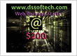 Dssoftech ( web designing and seo company)