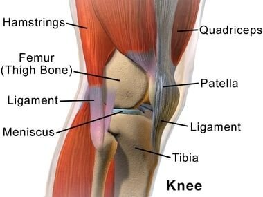 Knee Pain Treatment in NJ